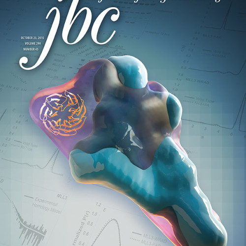 Cosgrove_JBC_October23_cover